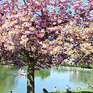 Spring in the park - Paris Bois de Vincennes by bubblehex08