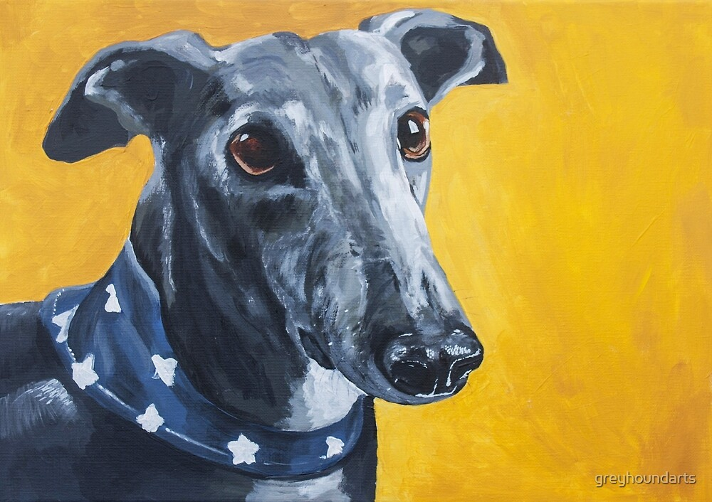 Greyhound Whippet Lurcher - Black & White by greyhoundarts