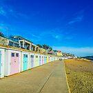 Beach Huts at Lyme Regis by Chris Thaxter