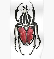 Cool Pretty Cute Bug Beetle Insect Illustration Drawing  Poster