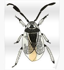 Weird Bug Insect Cool Random Cute Poster