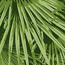 Leafy pattern  by elektrabakhshov