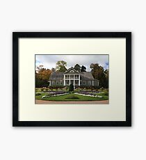 Beautiful flower garden Framed Print