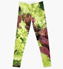 Mixed Salad Greens and Chives in Heirloom Garden Leggings