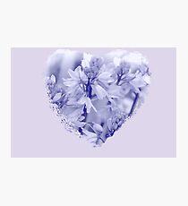 Blue Blue Heart Photographic Print