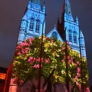 Flourishing St Mary's by Michael Matthews