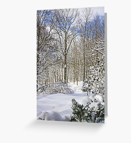 Snowy Winter Wonderland Greeting Card