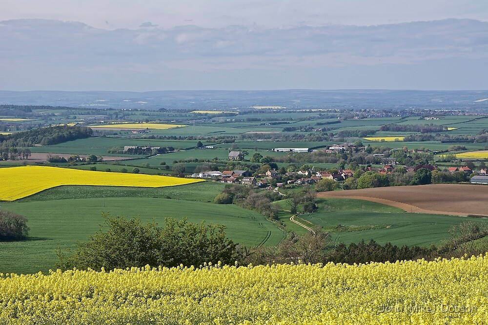 The Vale of Pickering by John (Mike)  Dobson
