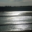 River Taw Sun on the Water by Leyh