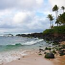 North Shore Vista by David Kocherhans