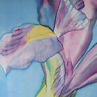 Close up iris by Krisztina Borody