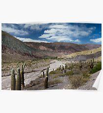 Salta Landscape V Poster