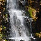 Waterfall by Tori Snow