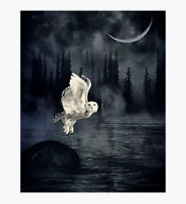The owl and her mystical moon Photographic Print
