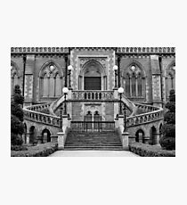 McManus Galleries Photographic Print