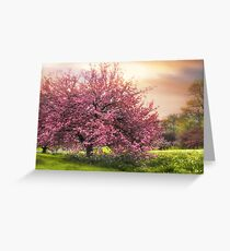 The Cherry Orchard Greeting Card