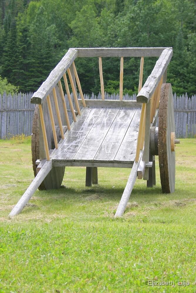 Old Wooden Wheelbarrow by Elizabeth  Lilja