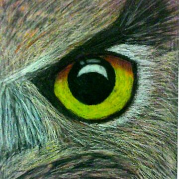 Eye of the Owl by chloemease