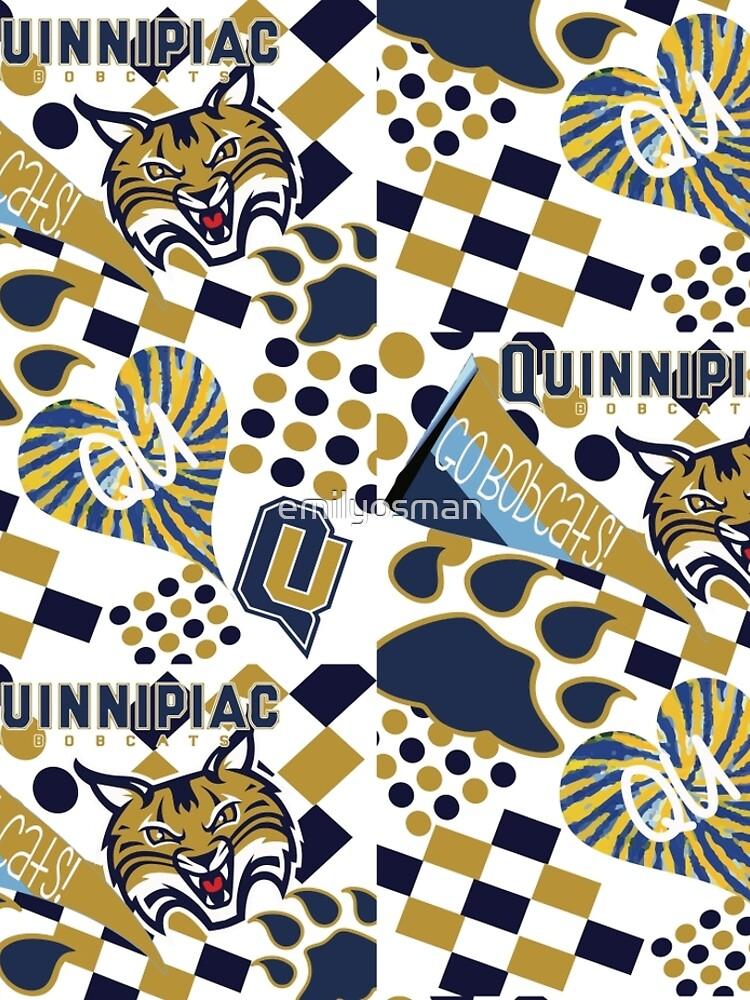 Quinnipiac University Collage  by emilyosman