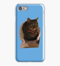 Cat in a Box iPhone Case/Skin