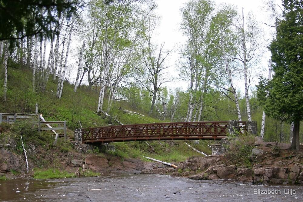 Bridge At Gooseberry Falls by Elizabeth  Lilja