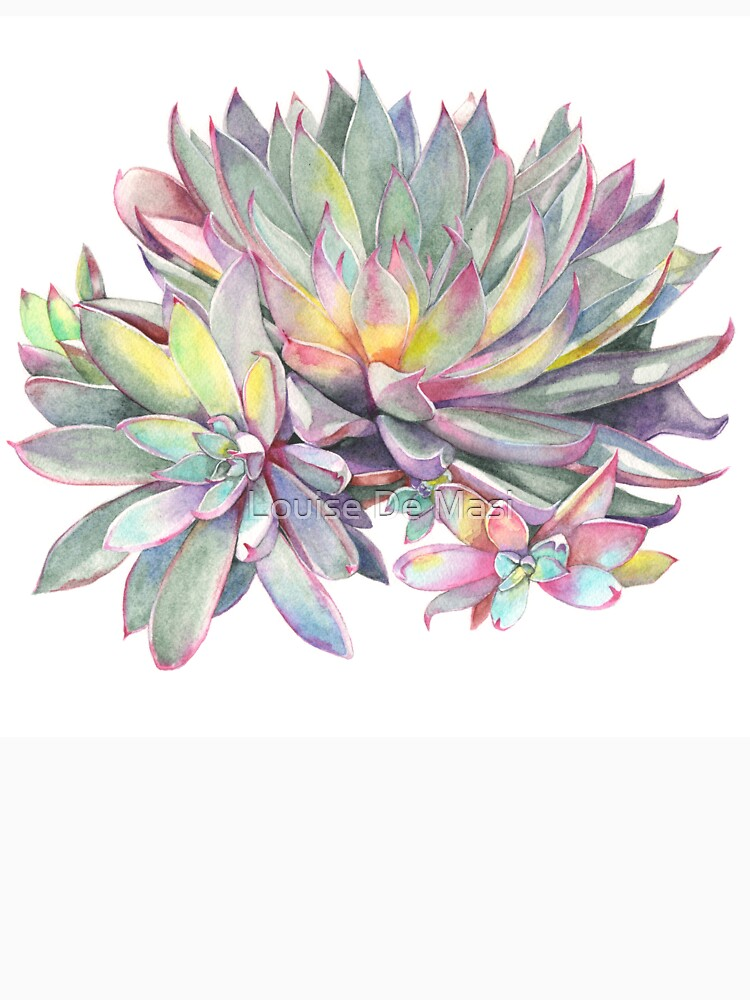 Succulent #2 by Louisedemasi