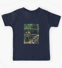 Winnie the Pooh Photograph Kids Clothes