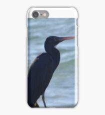 Grey Herons iPhone Case/Skin