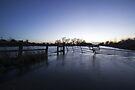 Flooded Fields by Nigel Bangert