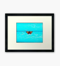 Butterfly - Unique Photography Framed Print