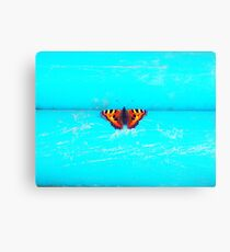Butterfly - Unique Photography Canvas Print