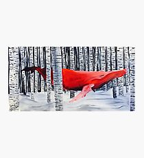 """Depth"" Red Whale Through Birch Trees Photographic Print"