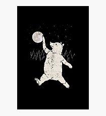 Bear Jordan Photographic Print