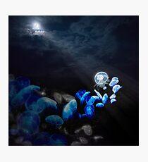 Moon Jellyfish Photographic Print
