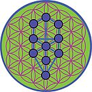 Flower of Life with Tree of Life by Jacqui Fae
