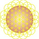Flower of Life by Jacqui Fae