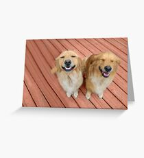 ✿♥‿♥✿   U Sure Do Crack Me UP ..THANKFUL FOR ANIMALS OUR PETS THAT MAKES US SMILE✿♥‿♥✿    Greeting Card