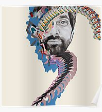 Animal Collective - Geologist Poster
