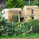 Dilapidated House...Sicily by Francis Drake