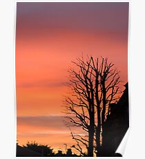 Sunset Sky and Silhouettes Poster