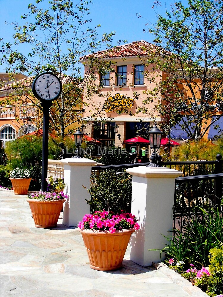 A Time For Shopping ~ San Deigo, California ~ United States by Marie Sharp