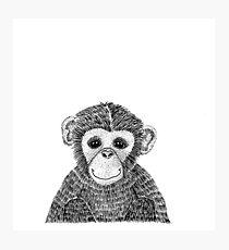 Cheeky Chimp Photographic Print