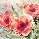 Poppy Power by Ruth S Harris