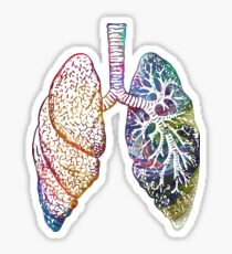 Lungs - Colours Sticker