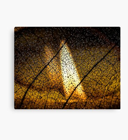 Flame's Reflection Canvas Print