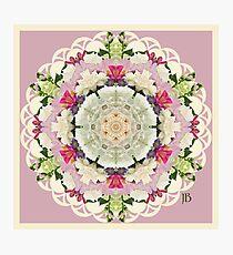 Flower kaleidoscope Photographic Print
