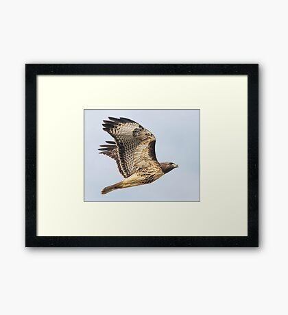 The Other Red Baron Framed Print