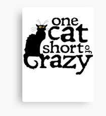 One cat short of crazy Canvas Print