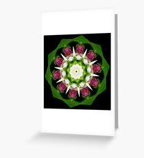Showy Lady Slippers Mandala Greeting Card
