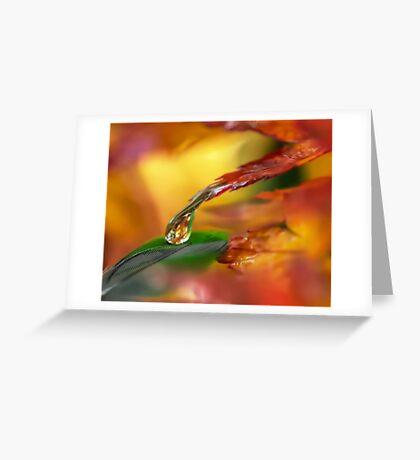 Life on Earth Greeting Card